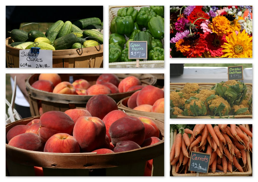 Collage of Produce From Farms