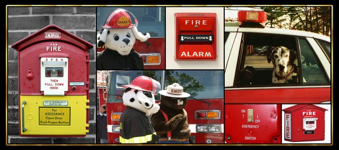 Fire Dog, Fire Prevention Mascots, and Fire Alarms